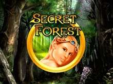 Secret Forest в казино Вулкан