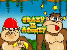 Играть в аппараты Вулкан Crazy Monkey 2
