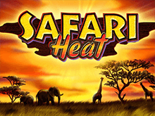 Автоматы Safari Heat в казино на деньги