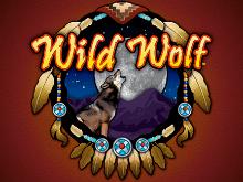 Дикий Волк – аппарат на зеркале клуба Вулкан